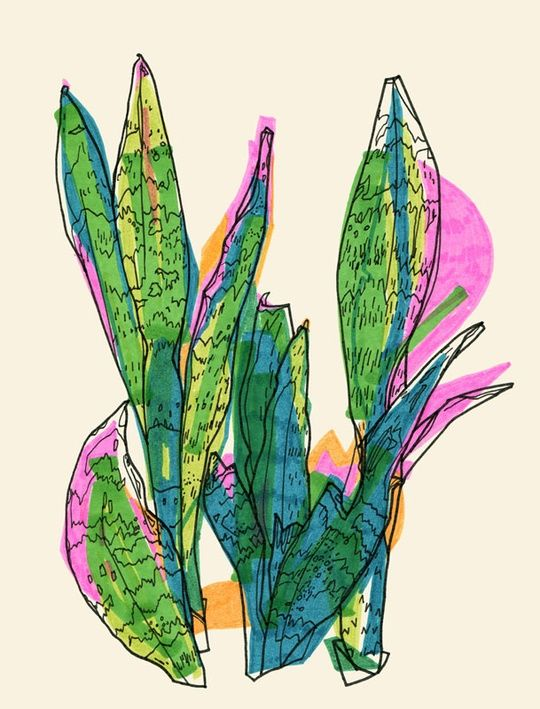 """Sanseviera"" by Marina Gerosa on #INPRNT - #illustration #print #poster #art #plant #plants #sanseviera #green #nature #bright #colors #happy #fresh #pop"