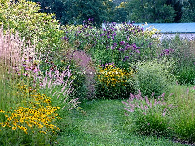 A mowed-grass path through a naturalistic garden filled with flowering perennials and ornamental grasses in late summer