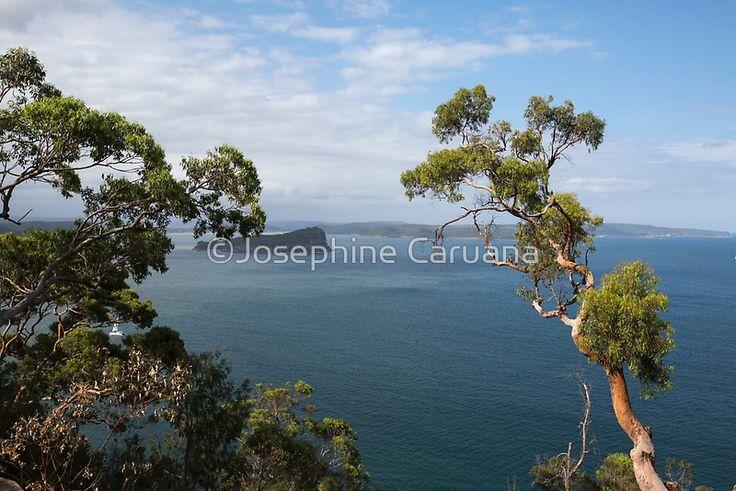 West Head Lookout NSW