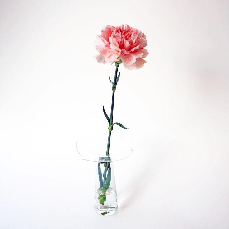 いいね!1,010件、コメント1件 ― SPURさん(@spurmagazine)のInstagramアカウント: 「花びらが何層にも連なるカーネーションは、パニエのように華麗な佇まい。鼻を近づけた時にふんわりと漂ってくるのは、不思議にも母を思い出すやさしい薫りです。今年の母の日は、5月14日の日曜日。(編集H)…」