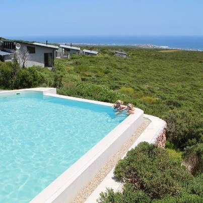 Photo from: Grootbos Private Nature Reserve