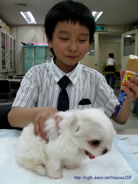 Sungha with Coco :)