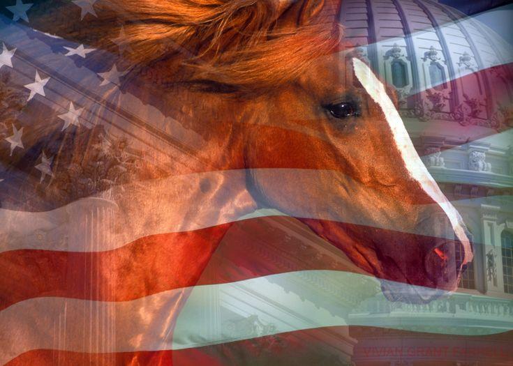 Interior Department whistleblower resigns, calling Ryan Zinke's leadership a failure https://cstu.io/6cea89