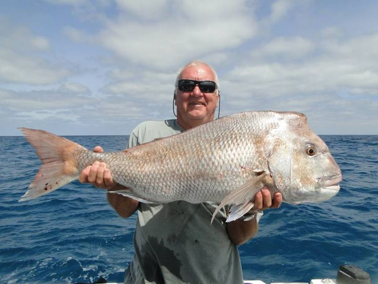 17 best images about fishing charters key west on for Deep sea fishing key west florida