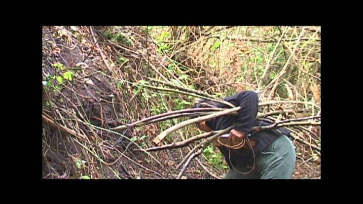 Sonidos Ancestrales Mapuche