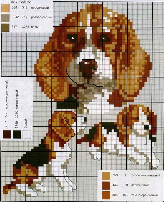 Points de croix *@* cross stitch beagle cross stitch.