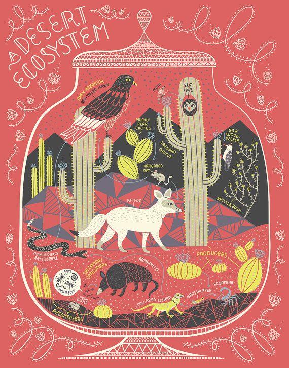 Ein Ökosystem Wüste: Terrarium Kunstdruck