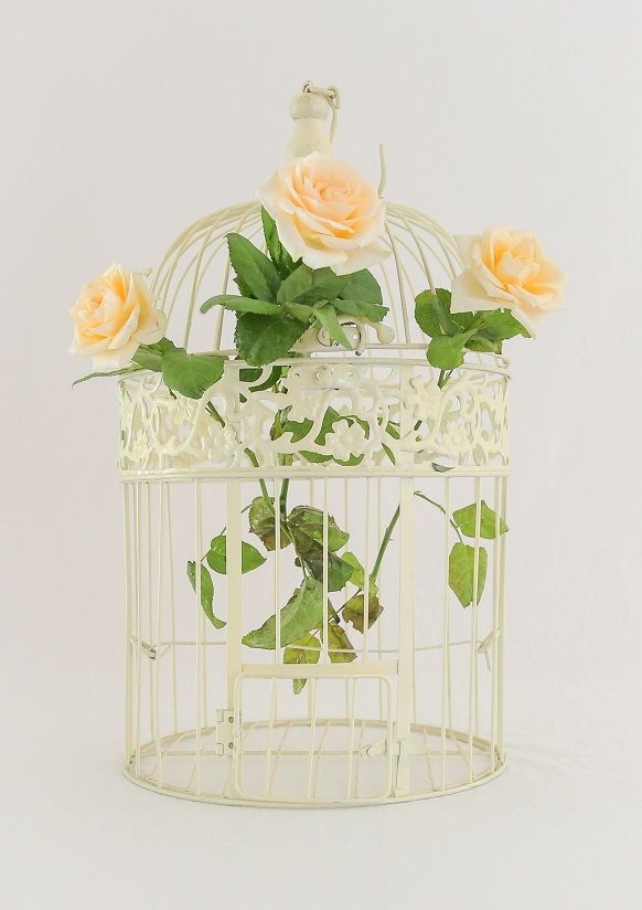 Cream birdcage- perfect as a wishing well for your cards! You could also hang in trees with florals $10 hire. we also have 3 smaller size cream birdcages.    email theweddingandeventcreators@gmail.com for bookings photo; shenay spinelli