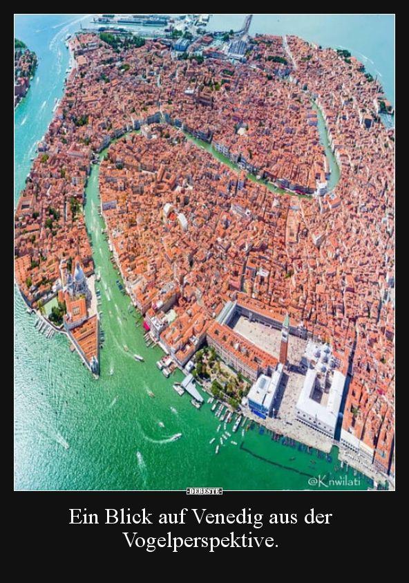 A visão de um pássaro de Veneza. | Fotos engraçadas, provérbios, piadas …   – Blödsinn