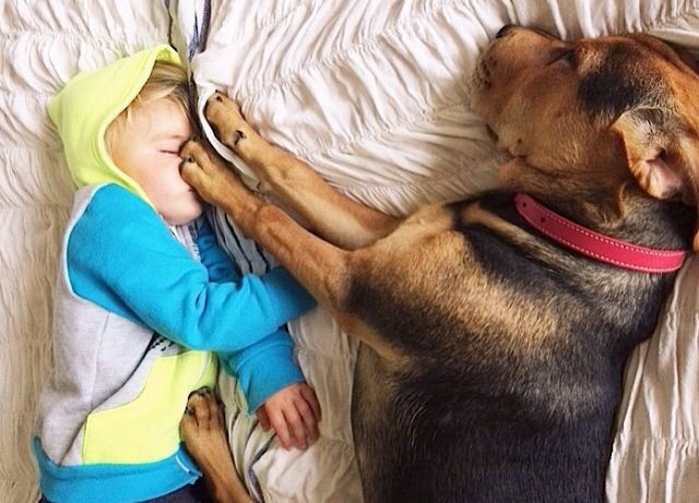 Best Theo Beau Images On Pinterest Children Adorable - Theo beau cutest animal human pairing ever