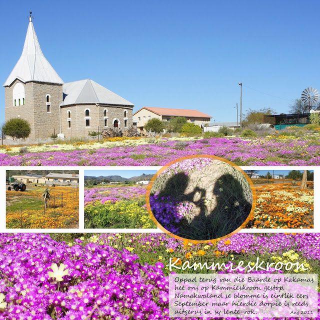 Kammieskroon, Namakwaland, South Africa. 130913
