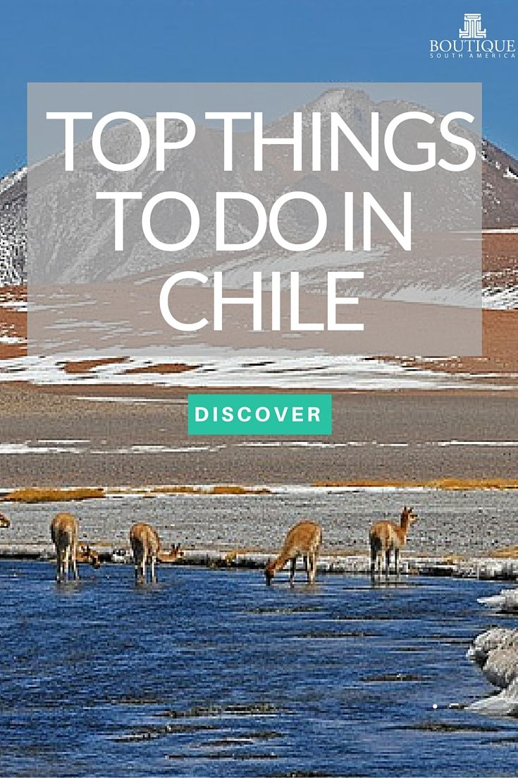 Discover Top Things to do in Chile: http://www.boutiquesouthamerica.com.au/blog/top-things-to-do-in-chile/