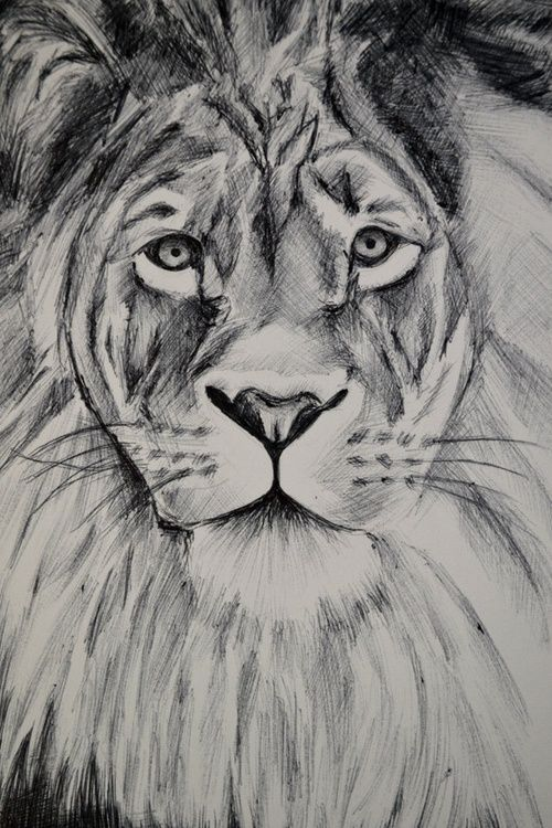 my  sister could prob draw this she really good..