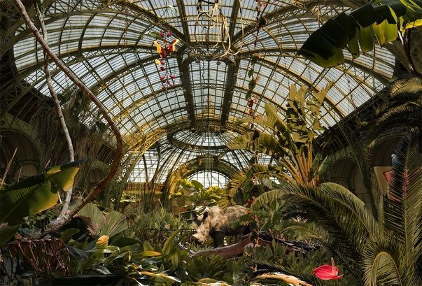 Chris Morin-Eitner, Jungle Grand Palais