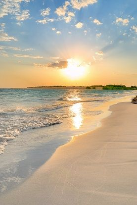Setting sun on an empty beach. This would make a stunning wall mural.