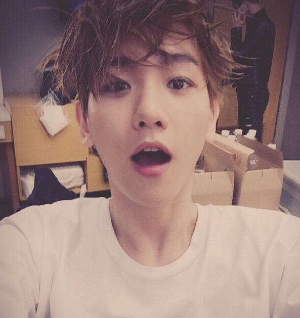 Baekhyun is my bias wrecker                                                                                                                                                                                 Mais