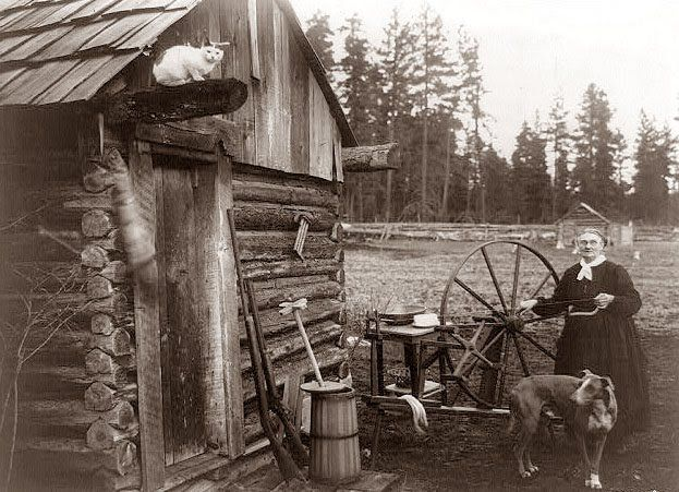 old homestead on a farm in Washington state. The picture was made in 1908. Notice the cat up on the beam of the log cabin. The guns, butter churn and spinning wheel reminds us of the self sufficient lifestyle of the first part of the last century.