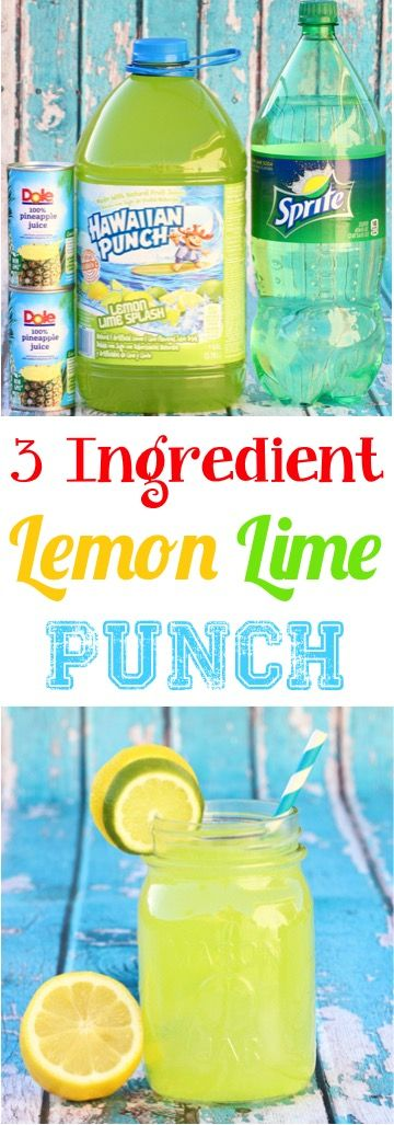 Easy Lemon Lime Punch Recipe! (Just 3 Ingredients) (DIY Thrill)