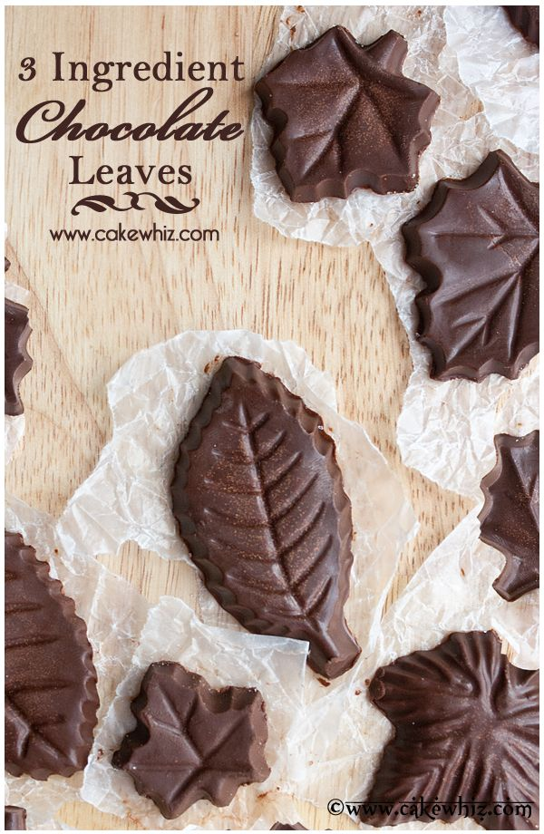 homemade chocolate leaves 8