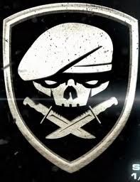 75th Ranger Regiment | 75th Ranger Regiment - The Medal of Honor Wiki - United Offense ...
