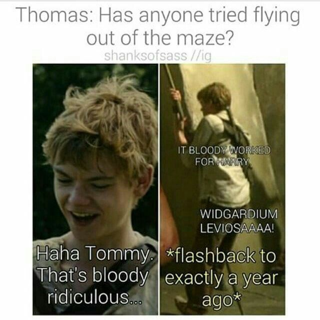 You're in the wrong book Newt. <<< bloody hell newt! You're NOT Harry Potter! <<< and everyone wonders where the limp came from!!