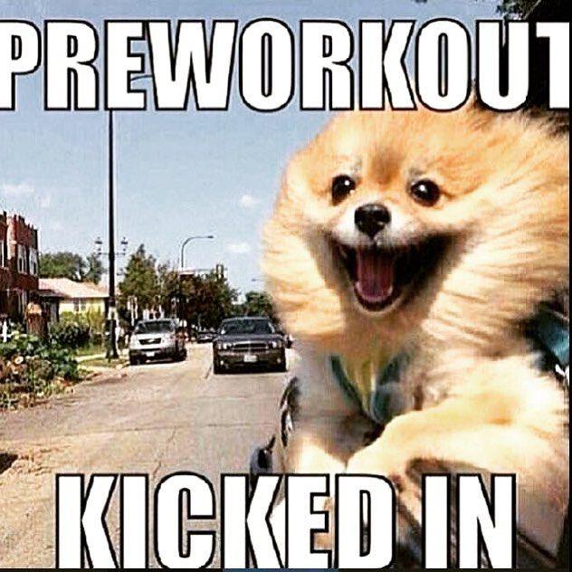149 best fitness memes images on pinterest fitness memes