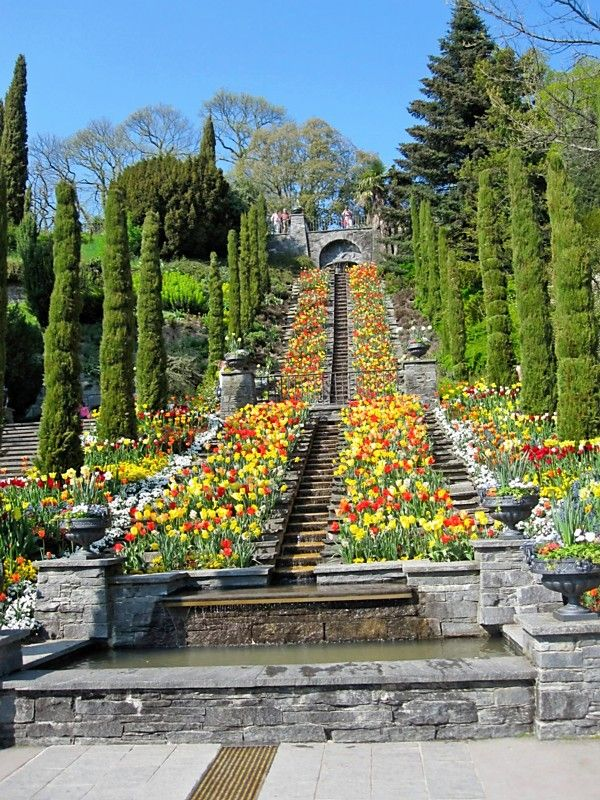Mainau Island near Lake Constance in Germany - so many memories here as I lived on the Bodensee for 3 months in 1987
