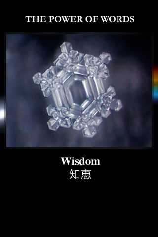 Emoto Shares MY HADO App and Water Knowledge in Preparation for ...