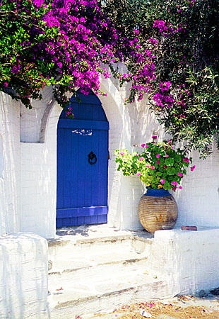 Door entrance with flowers in Parikia, Paros.
