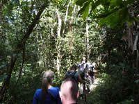 FOTOS DE LAGO VICTORIA | Viaje a Tanzania | Aventura en Tanzania