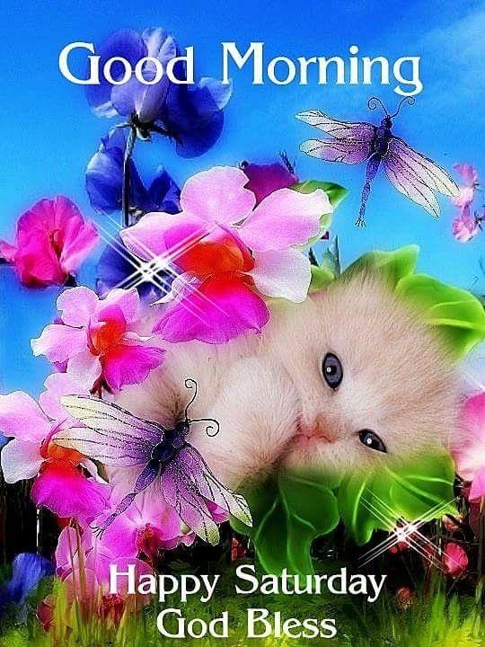 Good Morning, Happy Saturday, God Bless