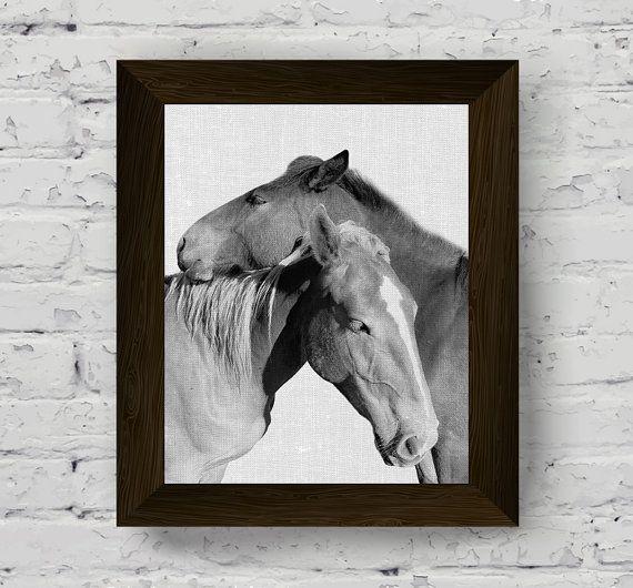fotografia bianco e nero cavallo animale wall stampa foto