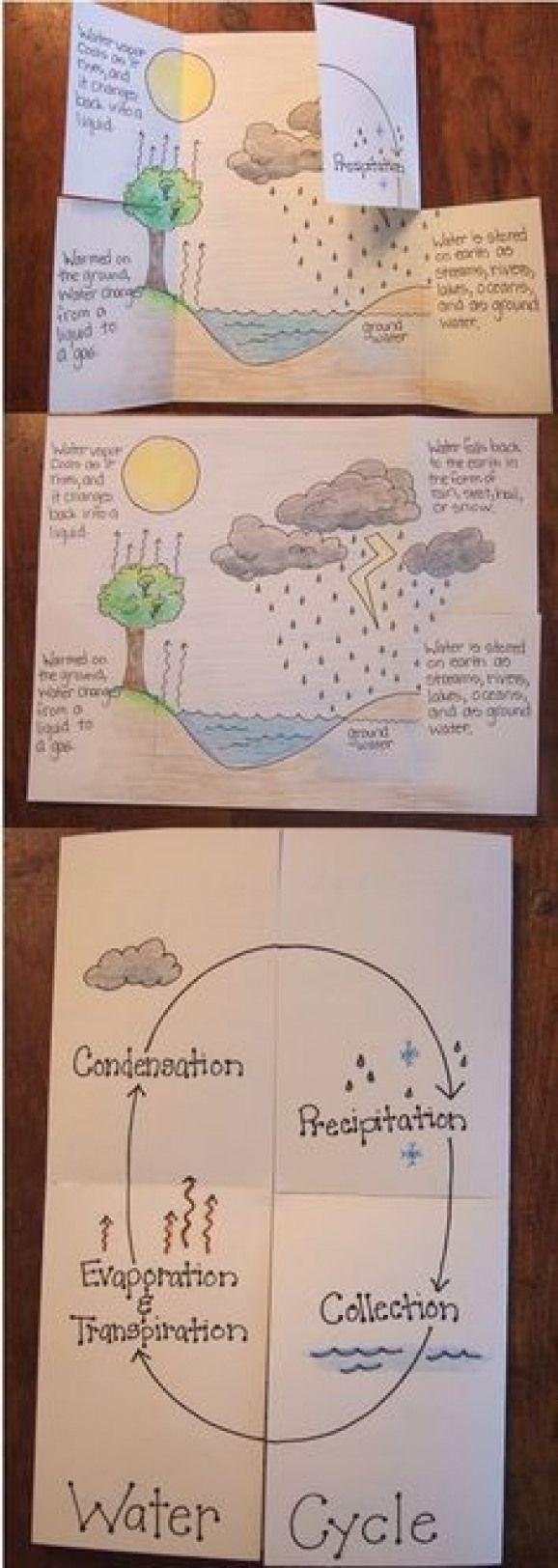 Cartao Do Ciclo Da Agua Geografia Criativa Photosynthesis Photosynthesis Foldable 4th Grade Science 6th Grade Science Science Lessons