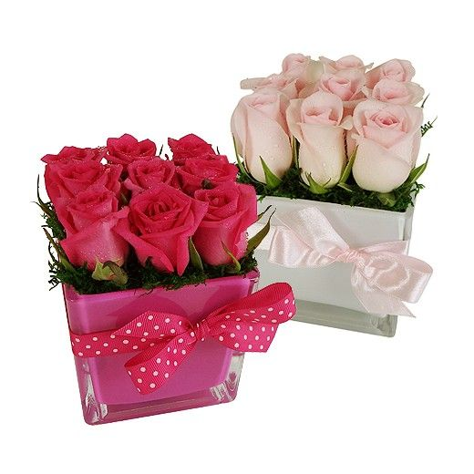 Bella Rosa - Auckland Delivery Only  - Bestow Gifts + Flowers - Howick - Auckland - NZ