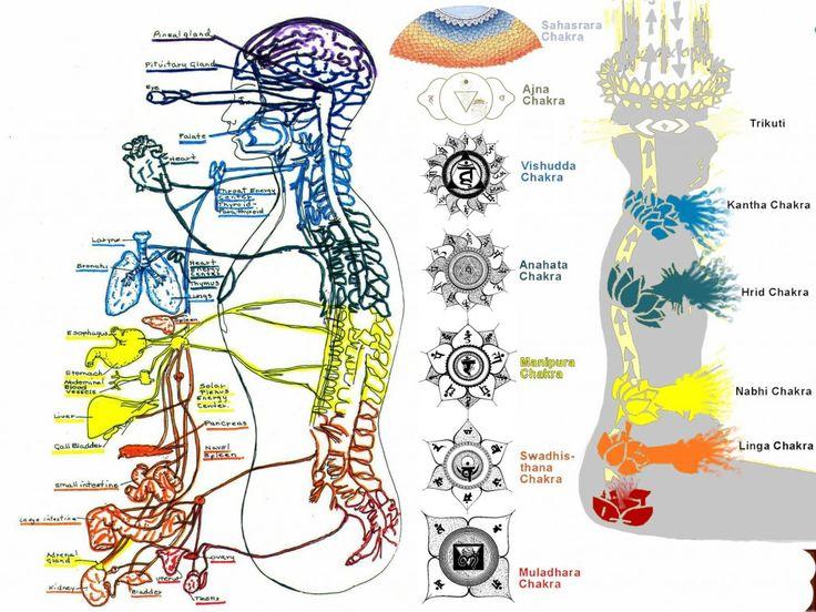 COMO IDENTIFICAR SI LOS CHAKRAS ESTÁN CERRADOS O BLOQUEADOS LosChakrasson vórtices (flujos turbulentos en rotacion espiral que nos conectan con el mundo) de energía a través del cual fluye la fu…