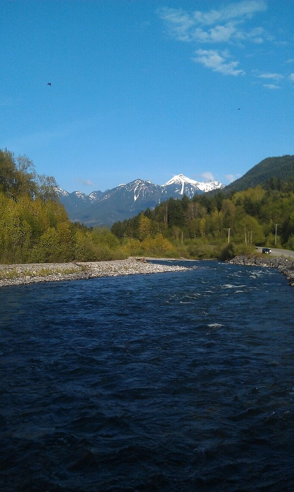 The Trans Canada Trail follows along the beautiful Vedder River! #trail #river #chilliwack