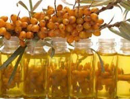 Облепиховое масло. Полезные свойства. Лечение. Применение   Блог Ирины Зайцевой