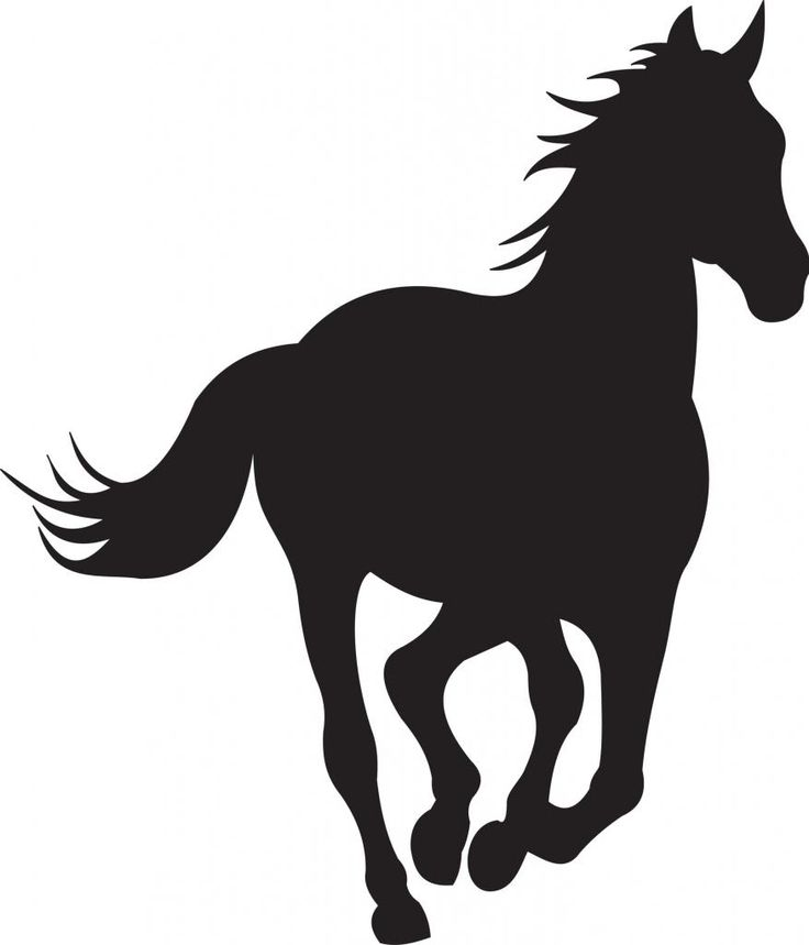 horserunninganimalsilhouettevinylwallartsticker_zps4441db1e.jpg Photo:  This Photo was uploaded by simon1905. Find other horserunninganimalsilhouetteviny...