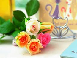 beautiful wallpapers of flowers - Google Search