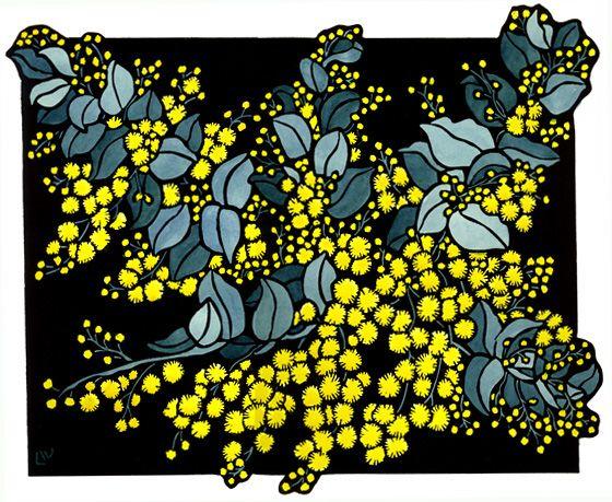 Silver Wattle Design - Limited Edition Handpainted Linocuts by Lynette Weir