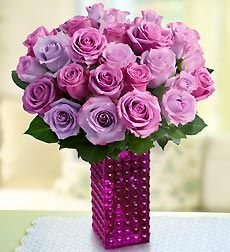 Purple Roses from RoseforLove.com