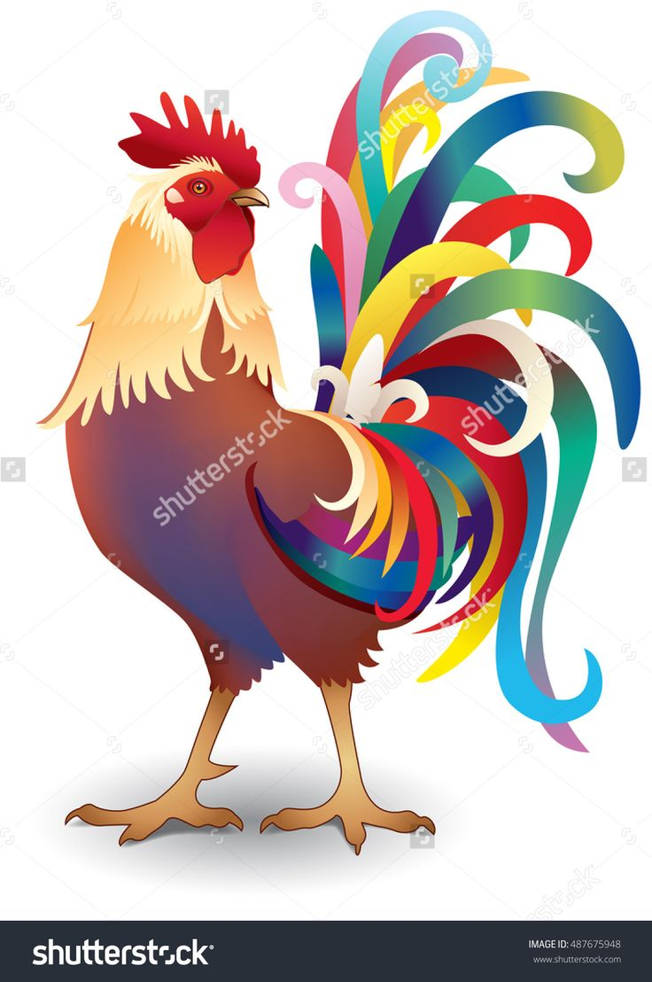 Vector; Cock; Chicken; Year Of The Rooster - 487675948 : Shutterstock