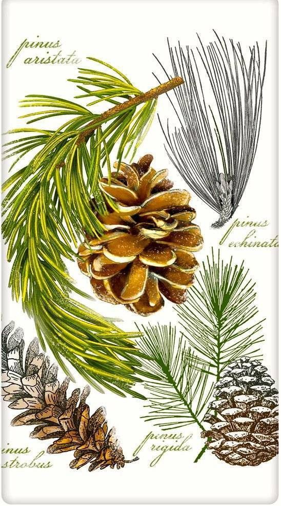 Evergreen Botanical Pinecone 100% Cotton Flour Sack Dish Towel Tea Towel