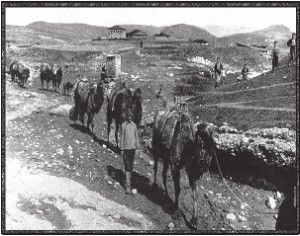 Καραβάνι με καμήλες περνάει πάνω από το Κούκουςς (Κιλκίς) Πρώτος Παγκόσμιος Πόλεμος