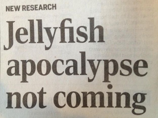 well I'm confused. I was counting on the jellyfish apocalypse all this time........ man.
