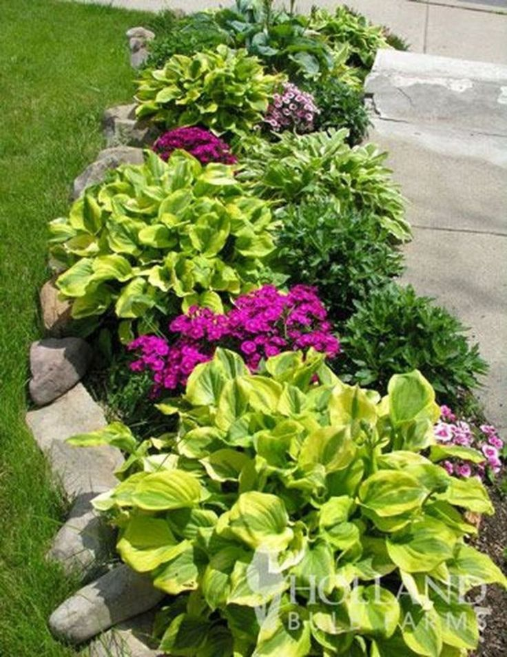 20+ Inexpensive Front Yard Landscaping Ideas – Kathrin On Holiday