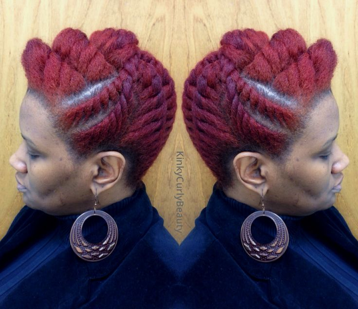 1359 Best Braids Natural Hair Twist And Dred Loc S Images