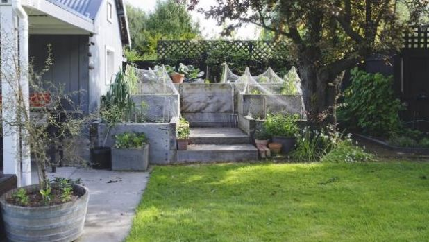 A vegetable garden is one of the most useful outdoor upgrades.