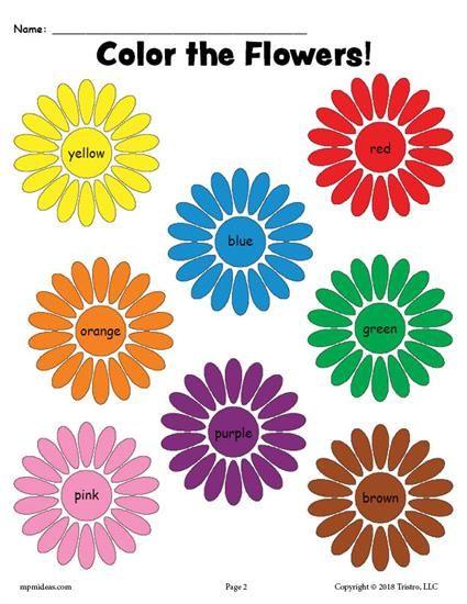 Free Printable Flower Color Words Worksheet