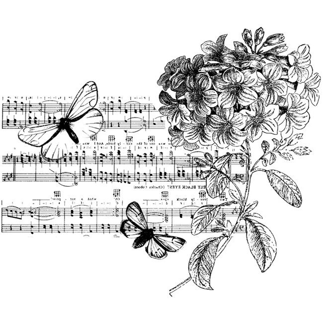 235 ... Music, Flowers & Butterflies